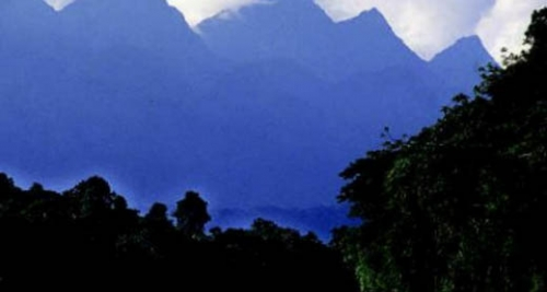 CIMA 2013. REDD+ in the Management of the Cordillera Azul National Park
